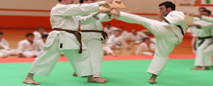 Escuela de Kárate Sei-Shin-Ryu